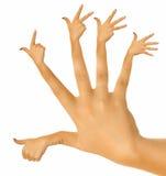 Perfect hand Stock Photos