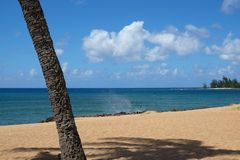 Perfect Hawaiiaans Strand Royalty-vrije Stock Afbeeldingen