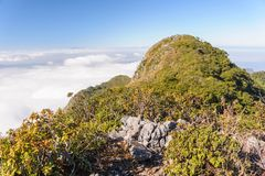 Perfect hiking trails on Doi Luang Chiang Dao wildlife sanctuary Royalty Free Stock Photo