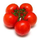 Perfect juicy tomatoes 4 Royalty Free Stock Image