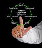 Perfect klienta cykl życia obraz stock