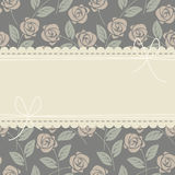 Perfect lace frame with stylish roses Stock Image
