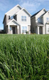 Perfect Lawn Royalty Free Stock Photos