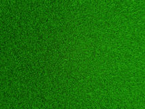 Perfect Lawn. Seen from vertical position.n Royalty Free Stock Photos
