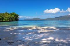 Perfect leeg Caraïbisch zandig strand met duidelijk water en groene palmen stock fotografie
