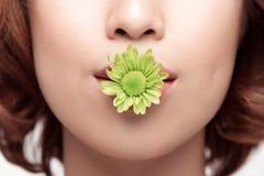 Perfect Makeup Piękno moda Wiosna azjata kobieta Zdjęcie Stock
