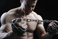 The Perfect male body. Awesome bodybuilder posing Stock Photography