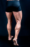 The Perfect male legs royalty free stock photo