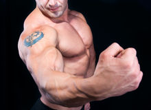 The Perfect male strong hand. Isolated on black background royalty free stock image