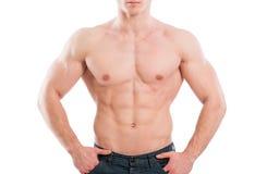 Perfect male torso. On white background Stock Photo