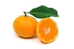 Perfect mandarijnfruit Stock Afbeelding