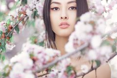 Portrait of a beautiful asian girl outdoors against spring blossom tree. Perfect model with creative vivid makeup and pink lipstick on lips and traditional stock images