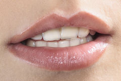 Perfect mouth Stock Image
