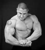 The Perfect Muscular male model. Black and white royalty free stock images