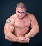The Perfect Muscular male model. Isolated on black background royalty free stock photography