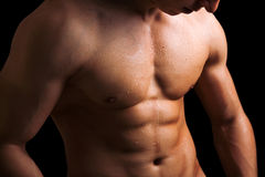 Perfect naked male torso Royalty Free Stock Images