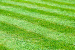 Perfect neat lawn with stripes on the grass Stock Photo