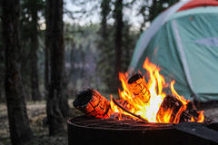 The Perfect Night. A late night campfire in the land of the midnight sun Stock Photography