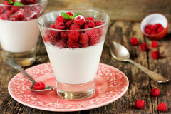 Perfect panna cotta with fresh raspberries in glass, summer dess. Ert, traditional Italian cuisine selective focus Royalty Free Stock Photo
