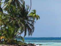 Perfect Paradijs tropisch strand met palmen in Panama stock afbeelding