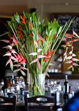 Perfect paradise exotic bouquet Stock Photos