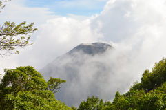 The perfect peak of the active and young Izalco volcano seen from a view point in Cerro Verde National Park in El Salvador. The perfect peak of the active and Stock Photo