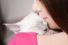 Perfect pet. Stock Images