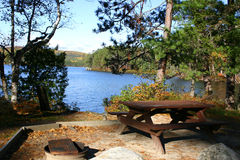 perfect picknickfläcken Royaltyfri Bild