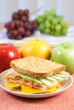 Perfect picnic sandwich. Delicious full of colors flavors and nutrients picnic sandwich Royalty Free Stock Image