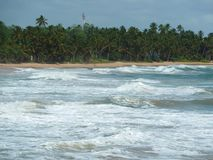 The perfect place for a holiday in Sri Lanka Royalty Free Stock Photography
