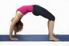 Perfect pose of yoga Royalty Free Stock Images
