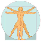 Perfect Proportions Royalty Free Stock Photo