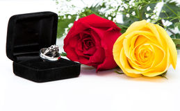Perfect Proposal Stock Images