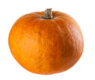 Perfect pumpkin Stock Images