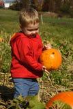 The Perfect Pumpkin Stock Image