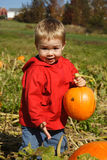 The Perfect Pumpkin Royalty Free Stock Images