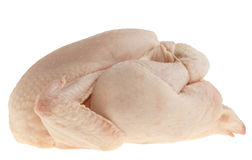 Perfect raw chicken isolated on white Stock Image
