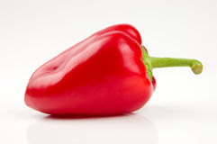 Perfect red bell pepper. Isolated on white royalty free stock images