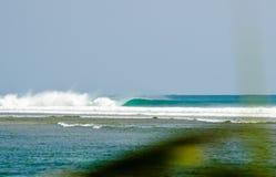 Perfect reef break Stock Photography