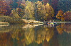 Perfect reflection of autumn forest. Perfect reflection in water of autumn forest Royalty Free Stock Photography