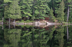 Perfect Algonquin Reflection Royalty Free Stock Photo
