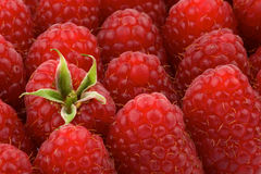 Perfect Ripe Raspberries Background Royalty Free Stock Photography