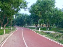 Running road in the morning. Perfect running road with green trees on both stock image