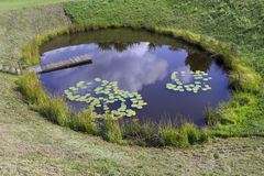 Perfect rural  pond Stock Image