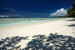 Perfect sandy beach with blue sky and shadow of trees, beautiful place for holiday and relax Royalty Free Stock Image
