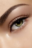Perfect shape of eyebrows, brown eyeshadows and long eyelashes. Closeup macro shot of fashion smoky eyes visage. Beautiful macro shot of female eye with classic Stock Photos
