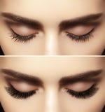 Perfect shape of eyebrows and extremly long eyelashes. Macro shot of fashion eyes visage. Before and after. Beautiful macro shot of female eye with classic smoky Stock Photos