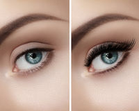 Perfect shape of eyebrows and extremly long eyelashes. Macro shot of fashion eyes visage. Before and after. Beautiful macro shot of female eye with classic smoky royalty free stock photography