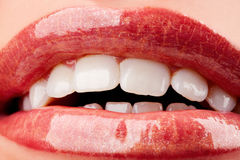 Perfect shiny woman's lips Stock Image