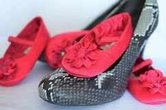 Perfect shoes needs every woman Royalty Free Stock Photo